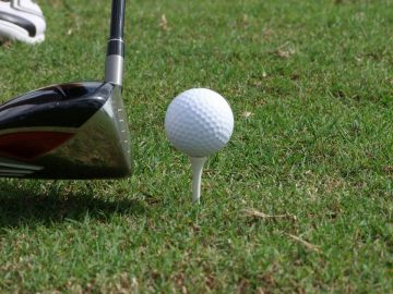Woods golf club