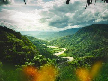 A beautiful shot of the rainforest in Peru