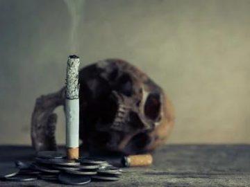 a lit cigarette